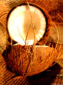 split-coconut